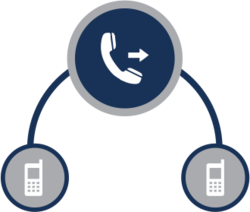 virtual-number-service-250x250